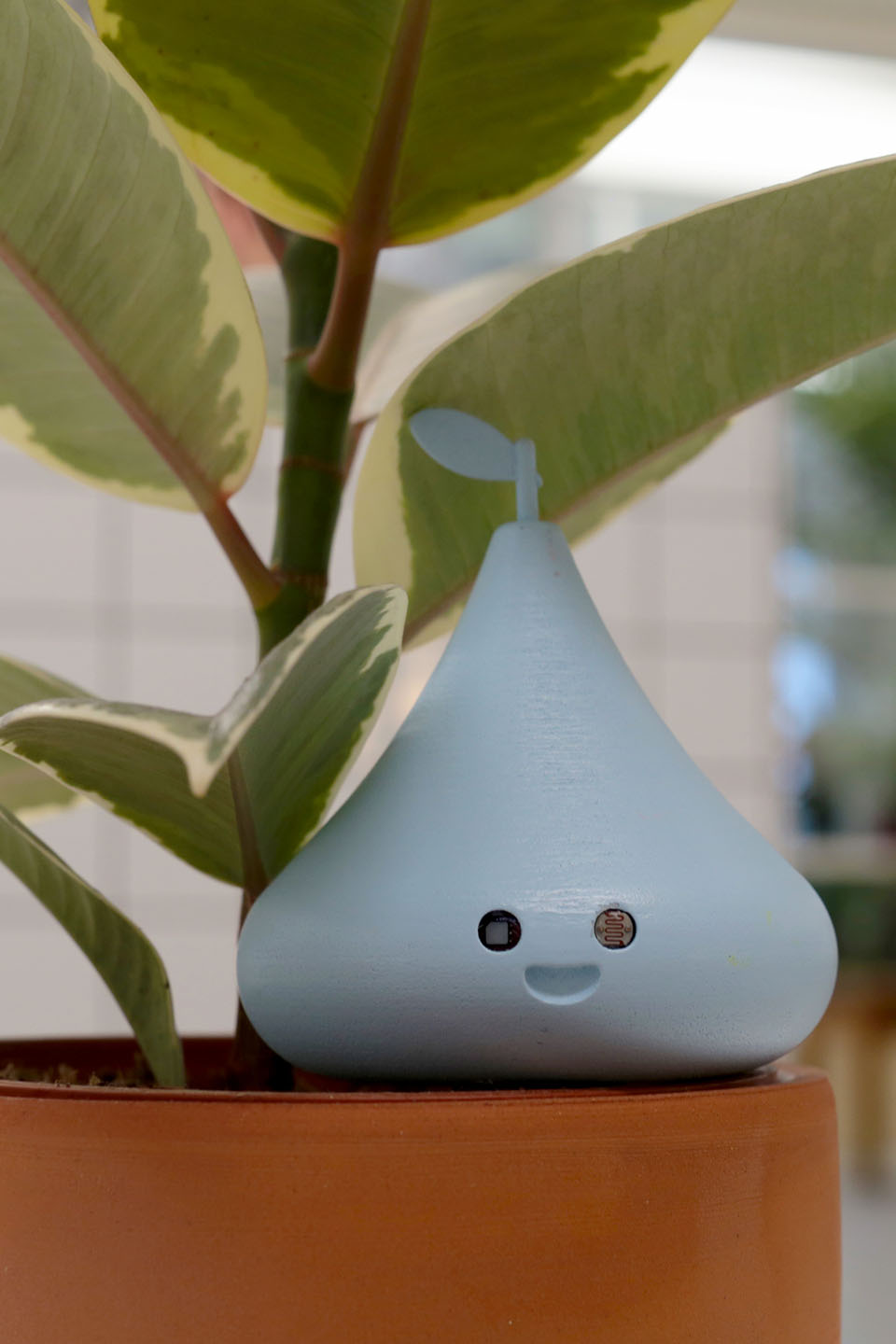 Sprout IOT
